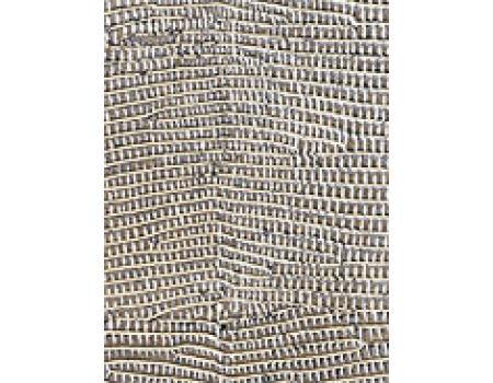 игуана серебряная
